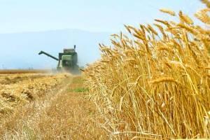 تاثیر رفع تحریم ها بر کشاورزی کشور