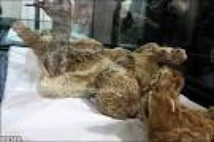 مرد نمکی پیدا شده در معدن نمک چهره آباد زنجان