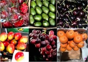 این همه میوه از چه کانالی به کشور قاچاق میشود؟!