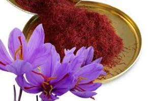 تولید زعفران ایران در ۱۰ سال آینده ۲ برابر میشود