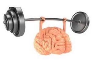 بافت مغز خود را قوی کنید