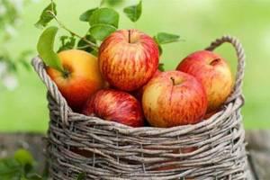 میوه ای که به سرعت زنان را لاغر می کند!
