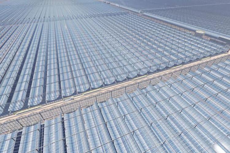 یکی از بزرگ ترین مزارع انرژی خورشیدی جهان برای استخراج نفت در عمان ساخته میشود