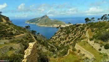 ۱۴ اردیبهشت؛ کشف جزایر جامائیکا توسط «کریستف کلمب»