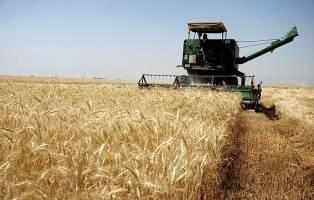 ۲۵ هزار تن محصولات زراعی در شهرستان آبدانان برداشت می شود