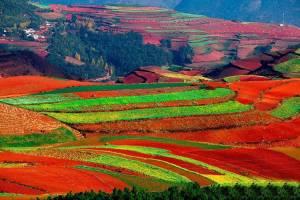 ۱۰ مقصد برتر گردشگری در چین