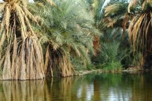 ثبت چشمه معدنی ديگ رستم در فهرست آثار ملی
