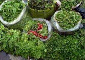 سبزیهایی که باید بیشتر مصرف شوند