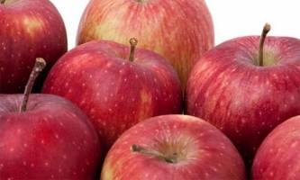 شرایط و ضوابط فنی صادرات سیب درختی