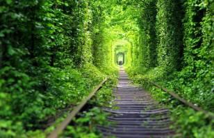 شگفت انگیزترین تونل های جهان