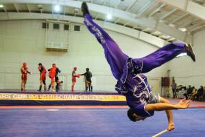 ووشوکاران اعزامی به قهرمانی آسیا معرفی شدند