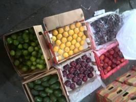 گزارش جدید از قاچاق میوه