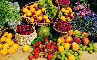 خسارت هنگفت قاچاق میوه طی سالهای 84 تا 88