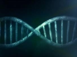 بررسی نحوه انتقال ژن و کشت باکتری در پژوهشگاه مهندسی ژنتیک