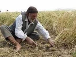 200 واگن قطار بازنشسته می شوند صندوق بیمه اجتماعی کشاورزان راهی برای جلوگیری ازمهاجرت ...