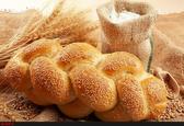 حفظ کیفیت نان و سلامت مردم مستلزم واردات گندم است