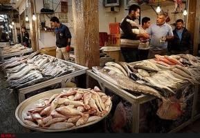 کاهش قیمت ماهی در بازار