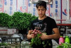 افزایش عرضه میوه فصل به بازار