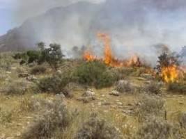 5 هکتار از باغات تفرش در آتش سوخت
