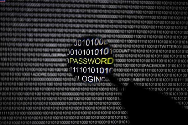 شرکتهای فعال در حوزه امنیت اطلاعات بکار گرفته می شوند