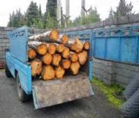 برخورد با 8 واحد صنعتی به دلیل سوزاندن پسماند چوبی