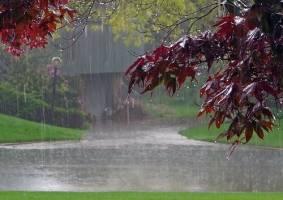 پیشبینی باران شدید برای تهران و 9 استان دیگر