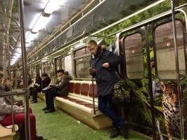 تبلیغات ببر و پلنگ در حال انقراض آمور در متروی روسیه!
