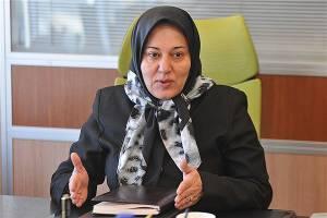 بازگشت سرمایه ایرانیان خارج از کشور در اولویت باشد