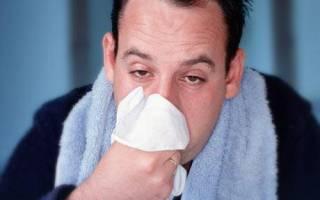 تغذیه صحیح، موثر در پیشگیری از سرماخوردگی