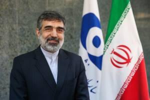 به زودی 130 تن اورانیوم خریداری شده وارد ایران میشود