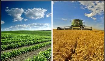 جزئیات تسهیلات ۱.۵ میلیارد دلاری برای توسعه صنایع کشاورزی