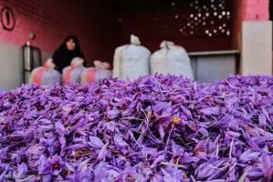 جزئیات قیمت زعفران پوشال
