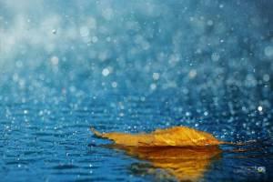 آسمان ۳۰ استان کشور بارانی میشود؛ مسافران مراقب باشند