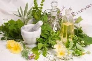 احداث ۵ پایانه صادراتی گیاهان دارویی در کشور