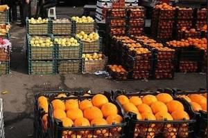 امسال سال ارزانی و فراوانی میوه است