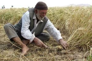 صدور « یارا کارت» بانک کشاورزی در خرداد ماه
