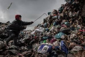 جنگل زباله