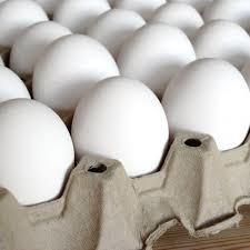 واردات تخممرغ برای تنظیم بازار
