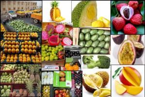 تولید داخل، قاچاق میوه را زمین کرد