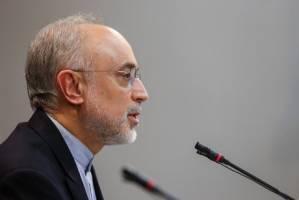 صالحی: با توجه به رفتار آمریکا تصمیم مقتضی را خواهیم گرفت