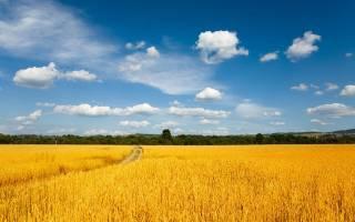 توصیههای ۶ روزه هواشناسی کشاورزی