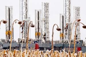 ایستادگی بازارهای نفت در برابر صعود دلار