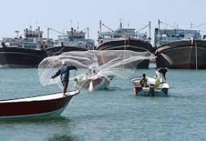 سرانه مصرف ماهی در ایران ۱۰.۶ کیلوگرم است