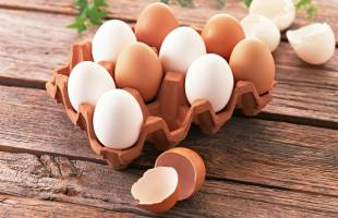 تخممرغ باز هم گران شد
