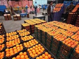 ذخیرهسازی ۶۰ هزار تن میوه برای شب عید