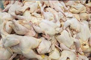 افزایش ۲هزارتومانی قیمت گوشت گوسفندی
