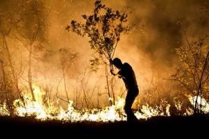 آتشسوزی در جنگلهای گیلان ادامه دارد