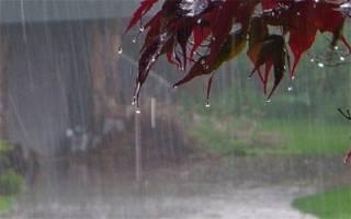 کاهش ۲۹ درصدی بارش در کشور