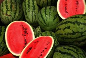 «هندوانه آببر» بیشترین دلار را آورد!