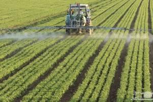 جزییات استمهال ۲ ساله بازپرداخت بدهی کشاورزان آسیب دیده حوادث